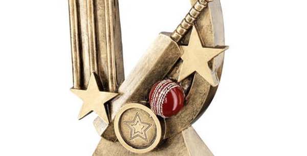 CRICKET OVAL/STARS SERIES TROPHY