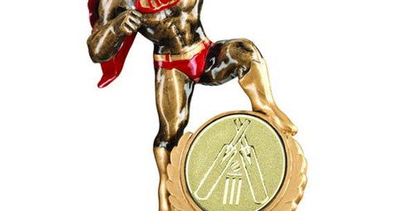 HERO AWARD WITH CRICKET INSERT - 7.25in