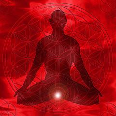 Muladhara- the Root Chakra