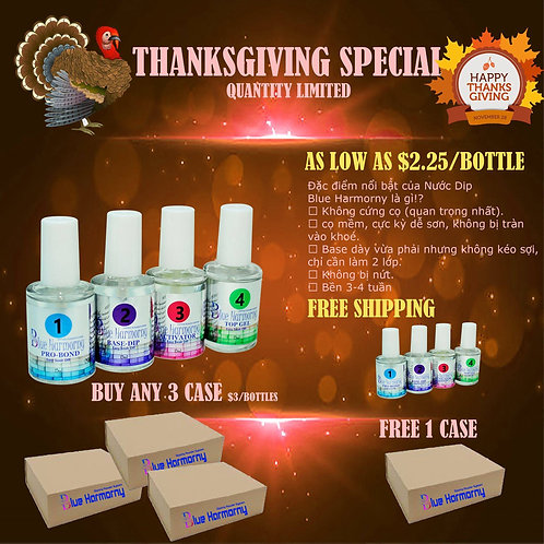 Thanksgiving Dip liquid special  $2.25/ total 576 botlle
