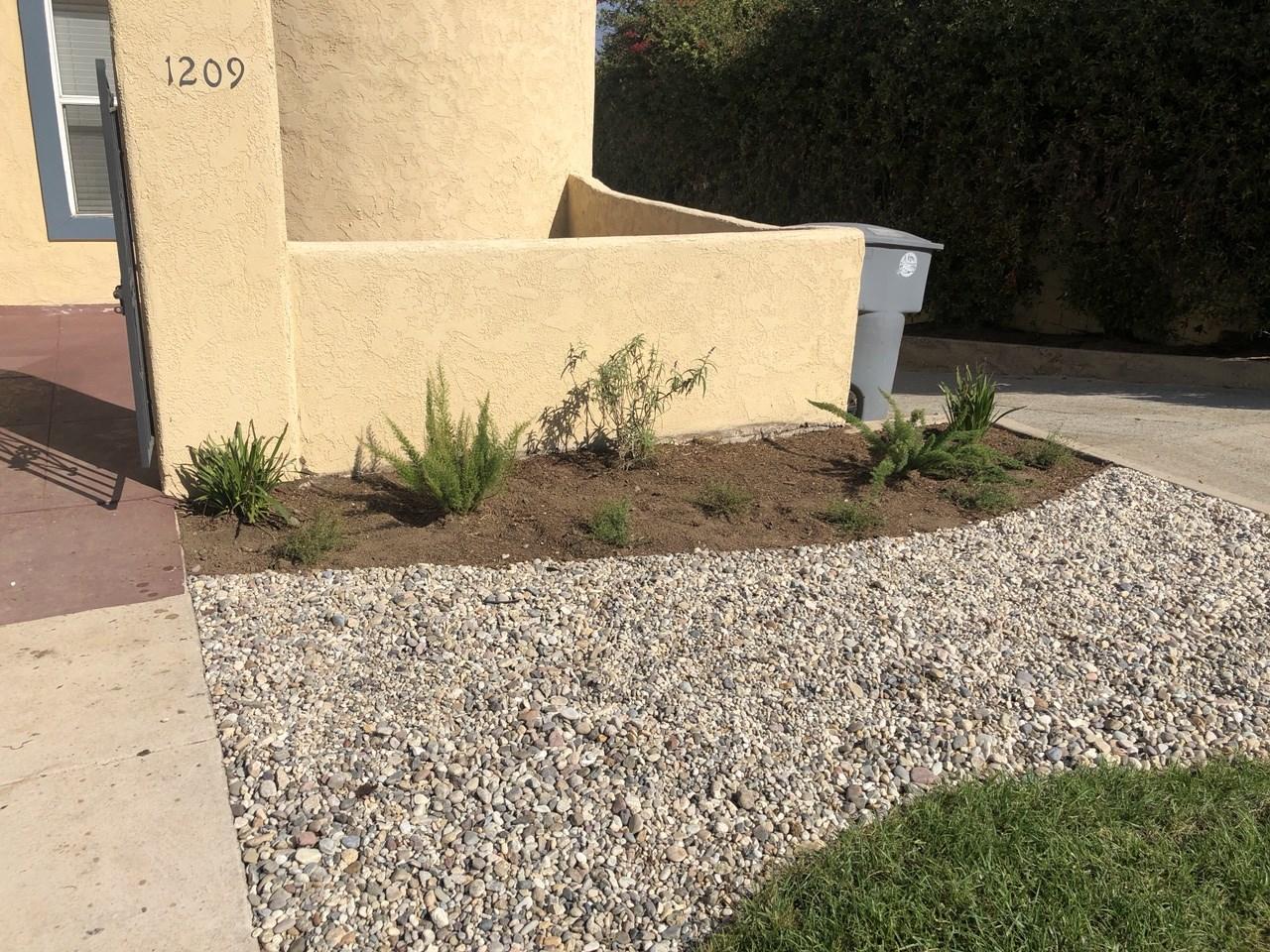 drought tolerant installations