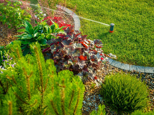 Irrigation Best Practices: Get the Most out of Watering Your Lawn