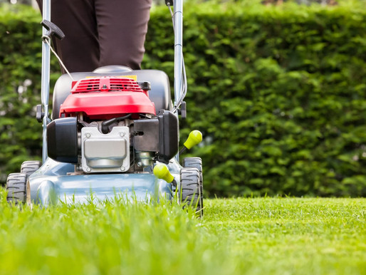 6 Tips on Mowing Your Lawn the Right Way