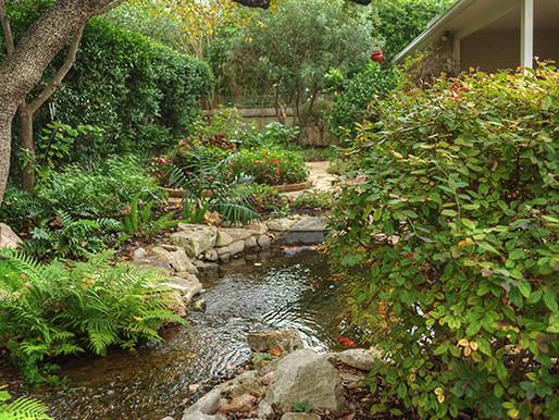 Easy Garden Ideas and Inspiration