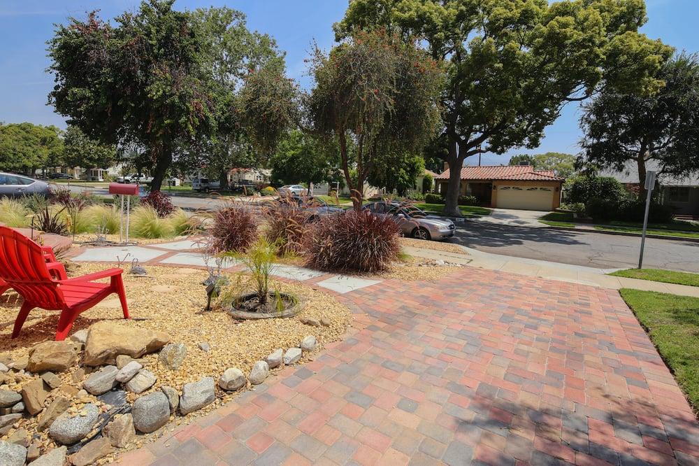 drought tolerant lawn