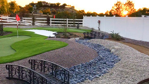 Benefits of Drought Tolerant Landscaping