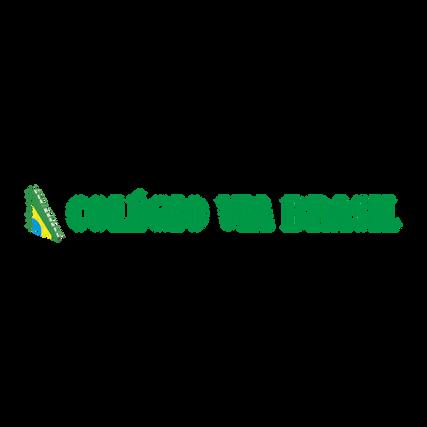 ColégioViaBrasil.png