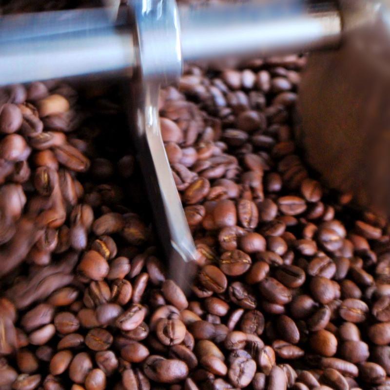 Freshly roasted coffee beans kent east sussex