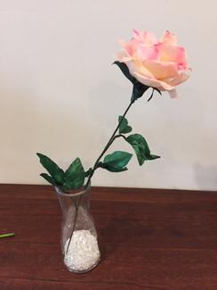 Roses on 5th September