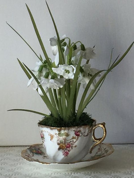 Snowdrops workshop on  1st  February