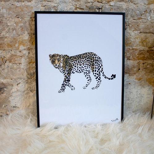 Print Leopard Profile
