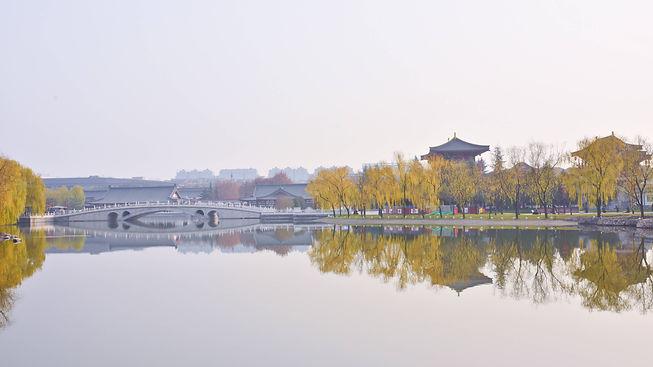 Halcyon Zi-Yuan.jpg