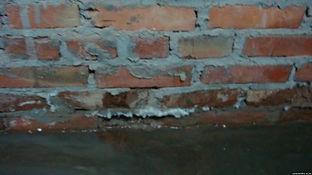 грибок после затопления
