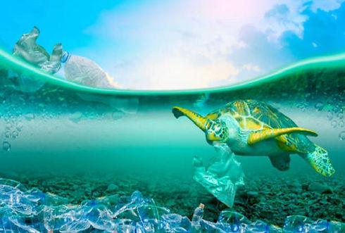 海洋プラスチック.jpg