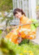 オレンジ蝶々