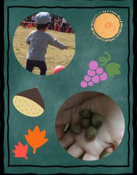 秋を見つけに!