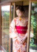 サーモンピンク 花の丸