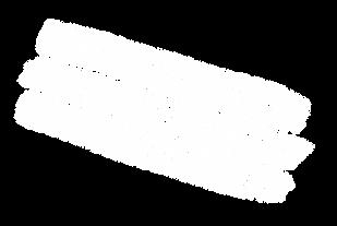 CSF_logo_white.png
