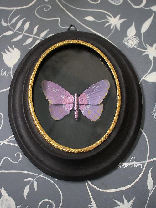 Framed Purple Butterfly