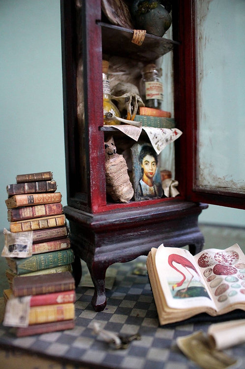 Miniature DIY Kit & Tutorial --- Cabinet of Curiosity