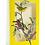 Thumbnail: Audubon Bird Pop Up Cards