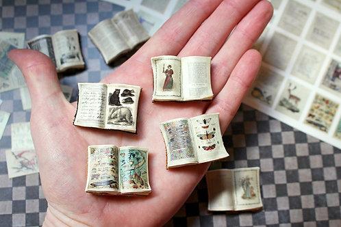Miniature Open Book DIY Kit & Tutorial --- 80 Books