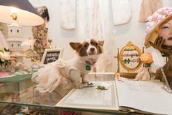 Zelda Poochgerald, Century Girl Vintage Boutique, New Orleans 2017