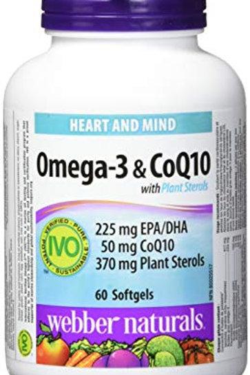 Omega-3 and CoQ10