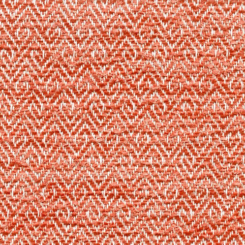 4188 Coral