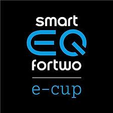 LogoSmart_e-cup_500x500px.jpeg