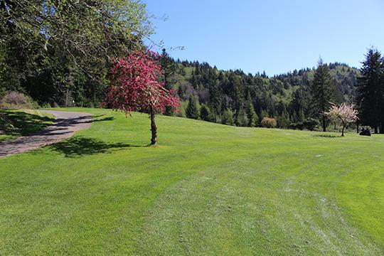 Hole View 2 - Del Norte Golf - Website