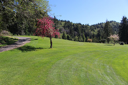 Hole View 2 - Del Norte Golf - Website