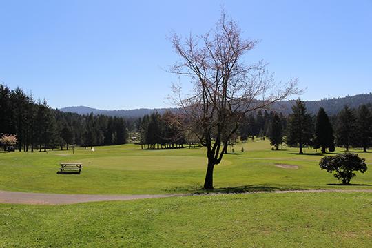 Hole View - Del Norte Golf - Website
