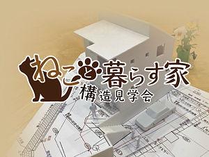 ねこと暮らす家.jpg
