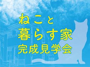 ねこと暮らす家_2210705.jpg