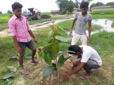 Heart4Earth Plant4Planet.jpg.jpg