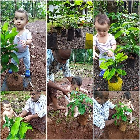 plant4planet heart4earth foundation.jpg