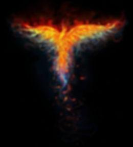 pheonix_bird.jpg