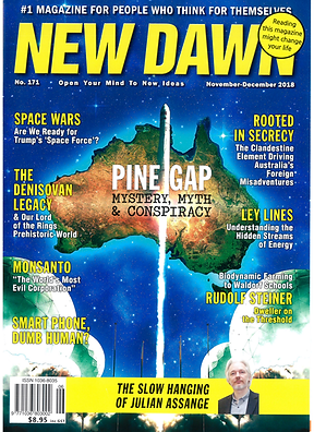 New Dawn 2018 article - cover.png