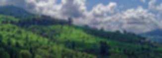 Kotagiri,Nilgiris - Copy.jpg