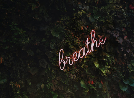 Breathe. Why is it so important in and out?