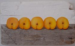 5 apricots
