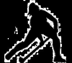 hockey1_edited.png
