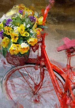 Bikes & Blooms Picture