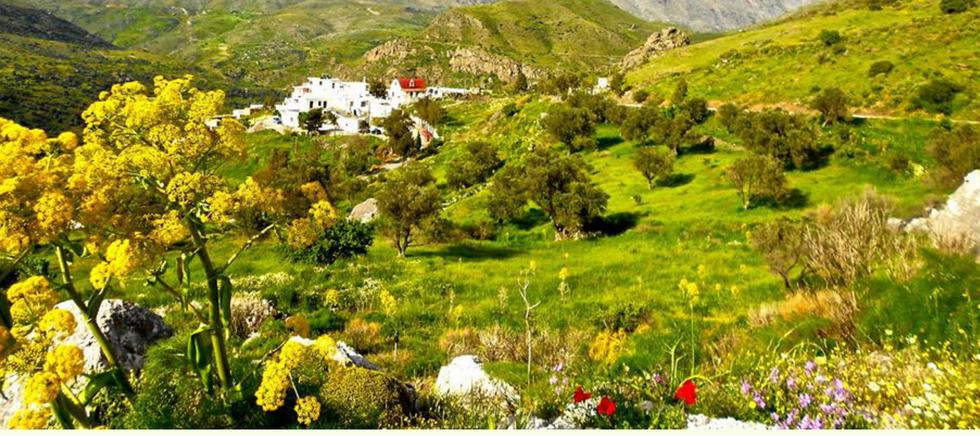 Authentic Crete private tour