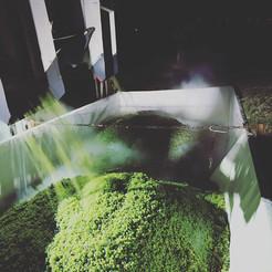 #sauvignonblanc #2018 #dryice #chilldown