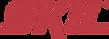 logo skil.png