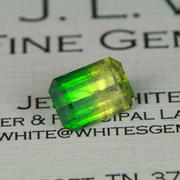 3.09 ct. Bicolor Mali (Grossular-Andradite) Garnet