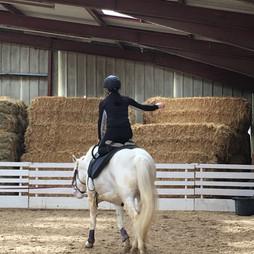 Yoga cheval Equi