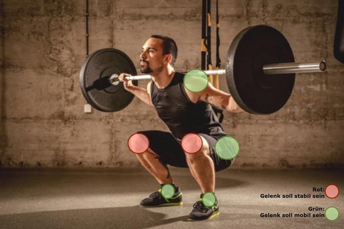 Mobilität & Beweglichkeit: Die Grundlage der Bewegungen!